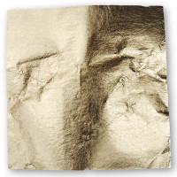 Metal Leaf - 25 Sheets Transfer
